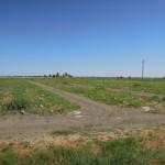 Melonenfelder in der Poebene