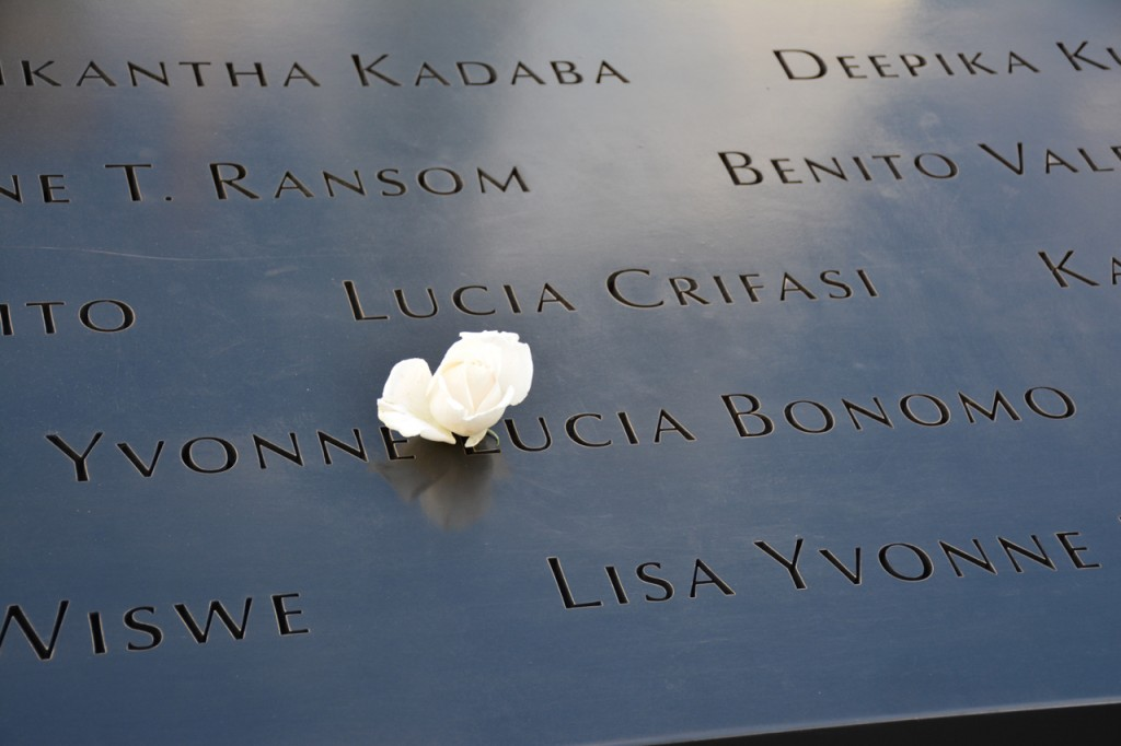 Die Blüte einer weißen Rose zur Erinnerung am Geburtstags einer Verstorbenen.